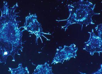 Evropa odobrila novi lijek za liječenje raka dojke