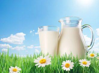 Globalne cijene mlijeka najveće u posljednje dvije godine