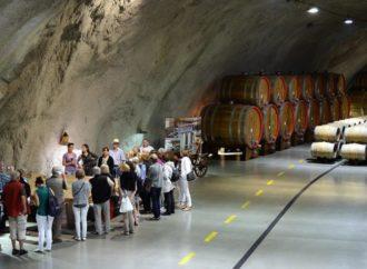 Priča o uspjehu crnogorskog vina
