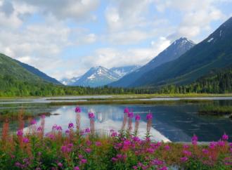 Zašto je Rusija prodala Aljasku?