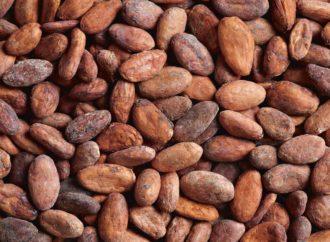 Najveći nedjeljni rast cijene kakaoa u posljednjih 5 godina