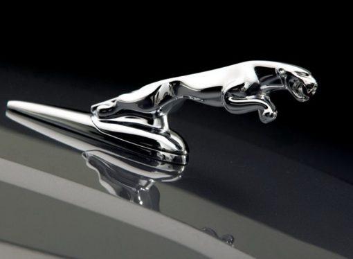 Novi SUV iz Jaguara stiže u julu