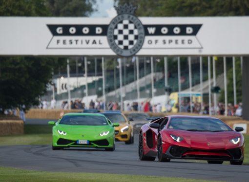 Festival brzine na jugu Engleske okupio zvjerke ceste