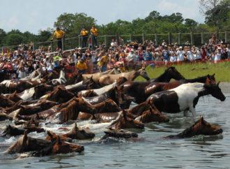 Neobičan događaj u SAD koji svake godine privlači turiste