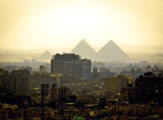 Mahovina kao rješenje zagađenja vazduha u gradovima