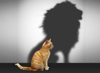 Samopouzdanje je precijenjeno, a evo kako da i bez njega činite čuda